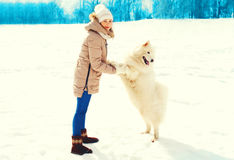 Woman owner and white Samoyed dog in a winter Royalty Free Stock Photo
