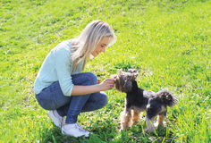 Woman owner with yorkshire terrier dog having fun Royalty Free Stock Photo