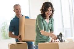 Woman Packing Cardboard Box Stock Photo