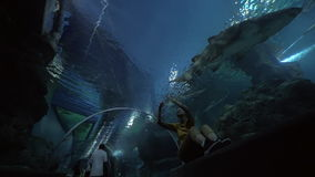 Woman with pad making photos in underwater tunnel of oceanarium stock video footage