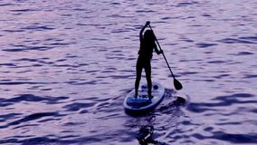 Woman paddle boarding at sunset. stock video