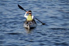 Woman paddling Stock Photos
