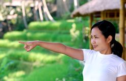 Woman at paddy field Royalty Free Stock Image