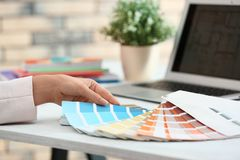Woman with paint color palette samples at table. Closeup royalty free stock photos