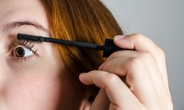 Painting her lashes. A woman painting her lashes Stock Photo