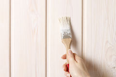 Woman painting wood Stock Photography