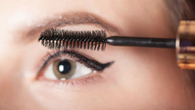 Woman paints the eyelashes mascara Stock Photography
