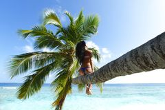 Woman on palm on sea backgroud Royalty Free Stock Image