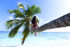 Woman on palm on sea backgroud Stock Photo