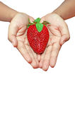 Woman palm with strawberry isolated Stock Photo