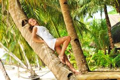 Woman on palm tree Stock Images