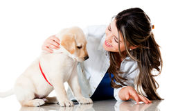 Woman pampering her dog Stock Photos