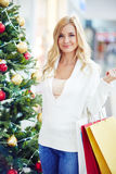 Woman with paperbags Royalty Free Stock Photography