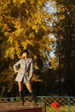 Woman in the park. Pretty woman in the autumn park royalty free stock image