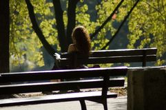 Woman in a park Stock Images