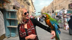 Woman with parrot. Portrait of woman interacts with a parrot with open wings at Bird Souq inside Souq Waqif, the old market tourist attraction in Doha center stock footage
