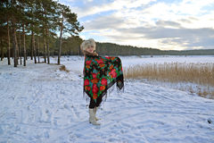 The woman in a pavlovo-posadsky scarf costs on the bank of the lake Royalty Free Stock Images