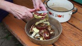 Woman peeling potatoes in the village stock video footage