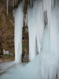 Woman peeps out from behind a large icicle stock photography