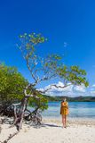 Woman on a perfect beach Stock Photos