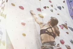 Woman with perfect fit body, beautiful muscular back, training on a climbing wall in sport hall. Woman with perfect fit body, beautiful muscular back, training royalty free stock image