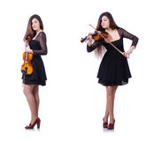 The woman performer playing violin on white Royalty Free Stock Photo