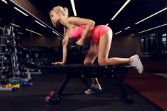 Woman performing one arm bent-over dumbbell row with bench. Beautiful female model with long braid, dressed in sports pink bra, shorts and white trainers Stock Photography