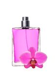 Woman perfume in beautiful bottle and pink orchid Stock Image