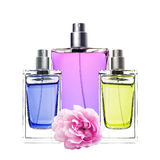 Woman perfume in beautiful bottles and peony flower isolated Royalty Free Stock Photos