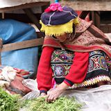 Woman in Peru Royalty Free Stock Images