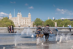 Woman and pet dog with Tower of London. LONDON, UK - MAY 12, 2016: Woman and pet dog enjoy the fountains on the Southbank with Tower of London in background Royalty Free Stock Images