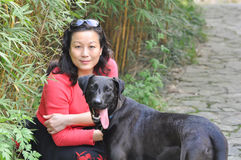 Woman and pet dog stock images