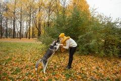 Woman and pet husky outdoors. Dog training Stock Photo