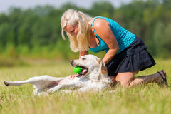 Woman pets a labrador at the belly. While he is lying on the back Royalty Free Stock Photography