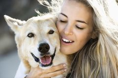 Woman petting dog. Stock Photo