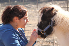 Woman Petting a Miniature Horse. Woman petting a miniature paint horse Royalty Free Stock Photography