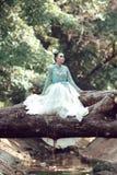 Woman, Photograph, Nature, Bride Stock Images