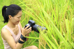 Woman photographer outdoor Stock Image