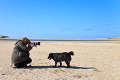 Woman photographer in the sand dunes on the beach stock images