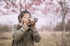 Woman photographer shooting in the forest. With nature beautiful background Royalty Free Stock Photography
