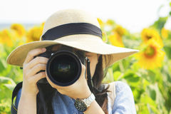 Woman Photographer. Taking pictures in a field of Sunflower Royalty Free Stock Photography