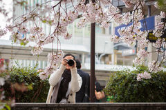 Woman photographer taking pictures in nature Stock Photography
