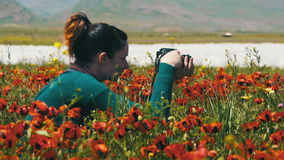 Woman is Photographing Field of Flowering Poppies in the Mountains. Blossoms Red Poppies in the Field Swaying in the Wind. Poppy field. Close-up of moving stock footage