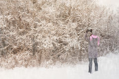 Woman photographs the winter forest Stock Images