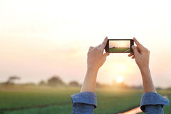 Woman photography rural prairie in sunset, relax time. Woman taking photo of rural prairie in sunset, relax time royalty free stock images