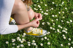 Woman picking daisies in the field Stock Images