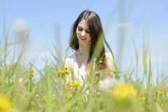 Woman picking dandelions Royalty Free Stock Photography