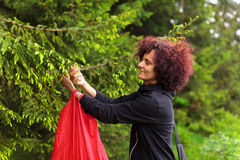 Woman picking fir buds Royalty Free Stock Photo