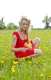 Woman picking flower in a meadow Stock Photos