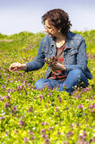 Woman picking flowers Stock Image